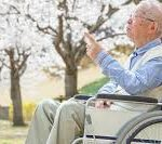 Man in wheelchair with care worker and cherry blossoms behind him.