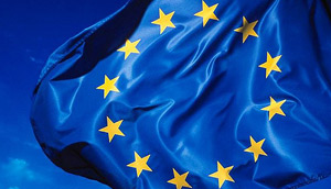 Undergraduate Program in European Studies- Photo of EU Flag (Photo Credit: Rock Cohen)