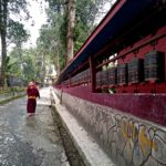 Monk walking along a red wall and trees in daytime
