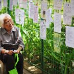 Old woman sits looking at papers on a fence
