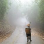 a person walks along a misty road wearing rubber boots and a woven basket.