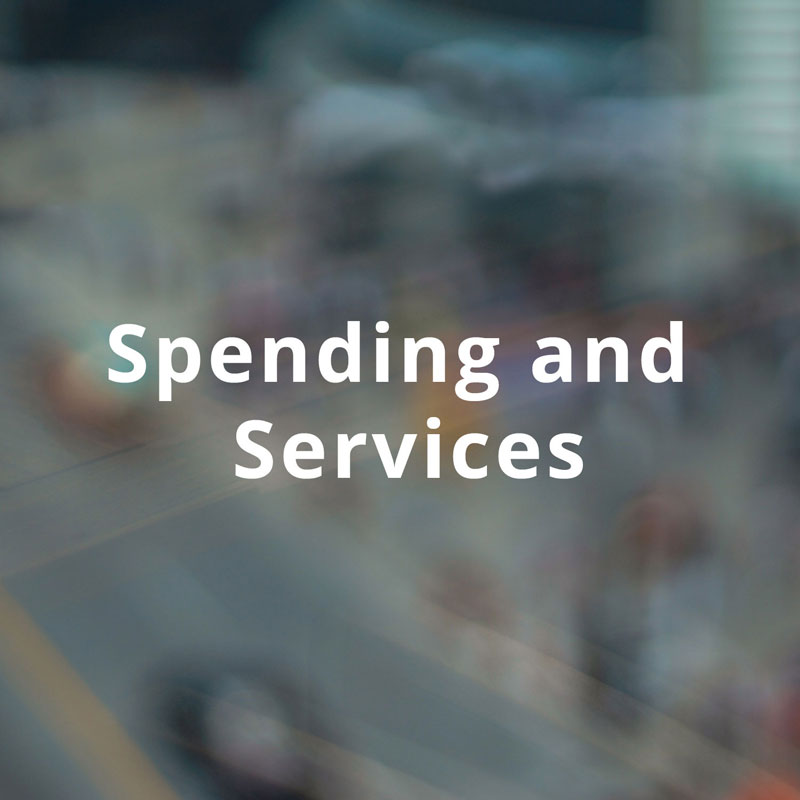 Spending and Services title image