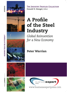 Book cover for A Profile of the Steel Industry