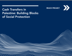 Cash Transfers in Palestine: Building Blocks of Social Protection